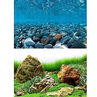 Marina River Rock / Sea Of Green Aquarium Background 24inch High