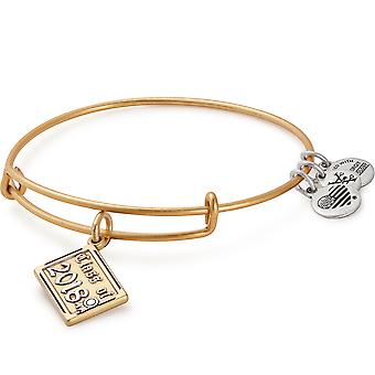Alex And Ani Class Of 2018 Gold Charm Bangle - A18EB03TTRG