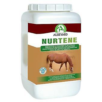 Audevard Nurtene 2kg (Horses , Food , Food complements)
