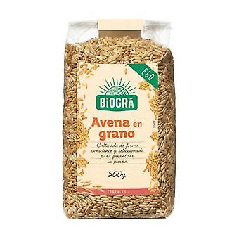 有機穀物のシリアルオート麦 500 g