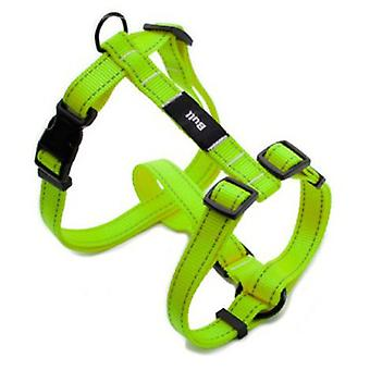 Bull Harness Fluor Green (Dogs , Collars, Leads and Harnesses , Harnesses)