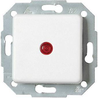 Kopp Inserte el interruptor blanco Ártico de Europa, Matt 614613083