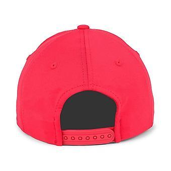 Louisville Cardinals NCAA TOW Mist Adjustable Snapback Hat