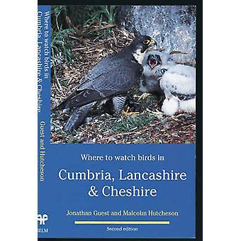 Onde assistir pássaros em Cumbria Lancashire Cheshire pelos comentários & Jonathan