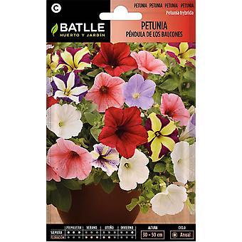 Batlle Petunia Pendula From Balconies (Garden , Gardening , Seeds)