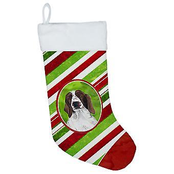 الكلب سبرينغر الويلزية حلوى قصب عطلة عيد الميلاد عيد الميلاد تخزين SC9340