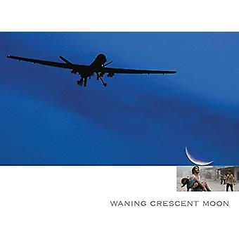 Kip Hanrahan - Crescent Moon Waning [CD] USA import