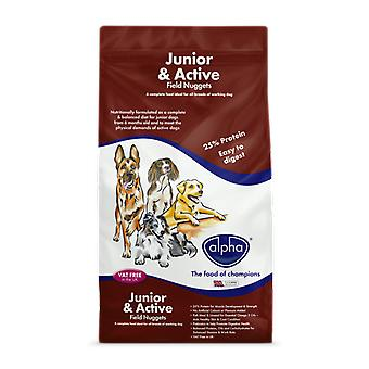 Alpha Junior & Active Field Nuggets - 15kg