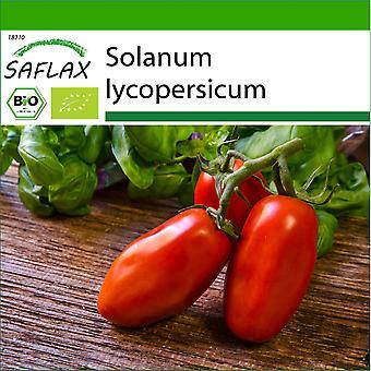 Saflax - 15 זרעים - עם אדמה - אורגני - עגבניות - סן מרזאנו - BIO - Tomate - סן מרזאנו - BIO - פומודורו - סן מרזאנו - אקולג'יקו - טוטו - סן מרזאנו - BIO - Tomate - סן מרזאנו