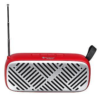 FM Radio Wireless bluetooth5.0 6W Stereo Speakers SD Card U-disk Playback Music Player
