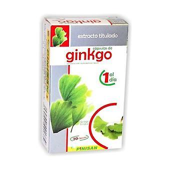Ginkgo Biloba 30 kapslar