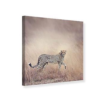 Piirtoalusta, Cheetah