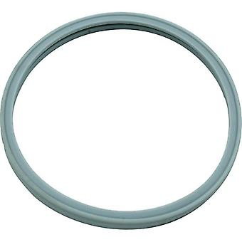 Pentair 614516 Hatteras Light Lens Gasket for Pool Star Pool or Spa Light