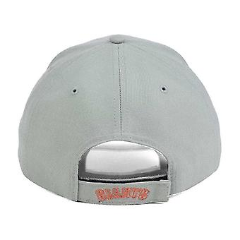 San Francisco Giants MLB 47 Brand Gray Pop Adjustable Hat