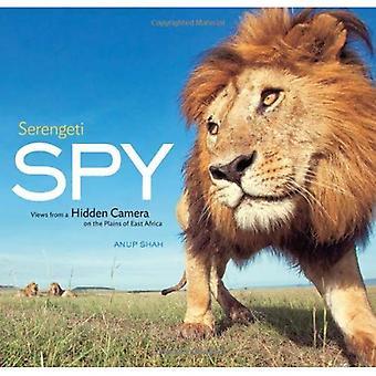Serengeti-Spy: Ansichten von einer versteckten Kamera auf den Ebenen von Ostafrika