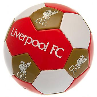 Liverpool FC Taille 3 Football