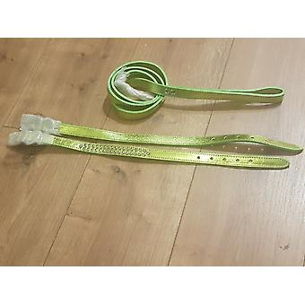 Lime Green Leather Dog Collar matching Lead Set
