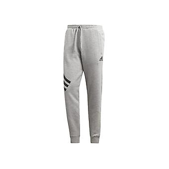 Adidas Tango Graphic Sweat DP2695 universelle hele året mænd bukser