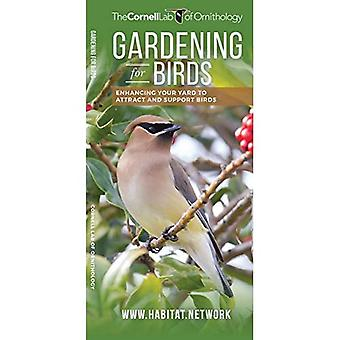 Gardening for Birds: Enhancing Your Yard to Attract and Support Birds