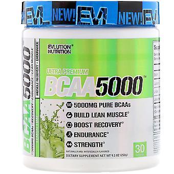 EVLution Nutrition, Ultra Premium BCAA5000, Lemon Lime, 9.1 oz (258 g)