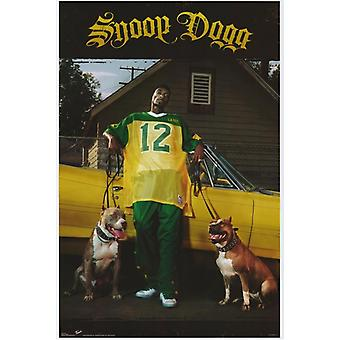 Snoop Dogg Movie Poster stampa (27 x 40)
