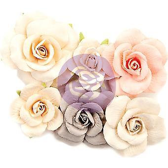 بريما التسويق الربيع مزرعة الزهور التجول