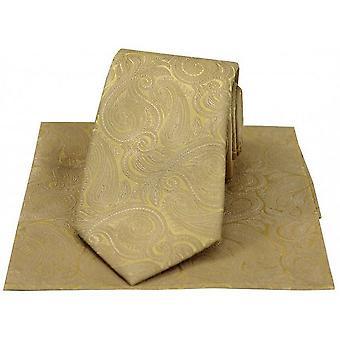 David Van Hagen Paisley Tonal luxo gravata e lenço - ouro champanhe