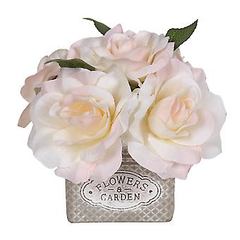 White Roses in Decorative Square Pot, Small