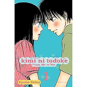 Kimi ni Todoke: From Me to You, Vol 1