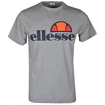 אללסה פרדו-חולצת כותנה אפורה