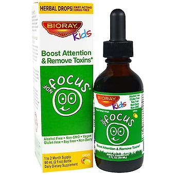 Bioray, NDF Focus, Boost Attention & Remove Toxins, Kids, Citrus Flavor, 2 fl oz
