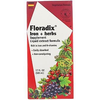 Flora, Floradix, Fer + Herbes Supplément, Liquid Extract Formula, 17 fl oz (500
