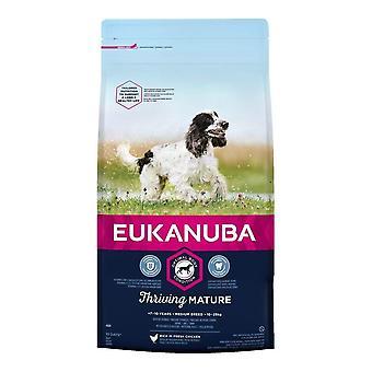 Eukanuba Bloeiende Volwassen Medium Breed Chicken - 2kg