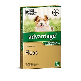 Het voordeel van groen 1 pak kleine honden 0-4 kg