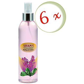 Sparset: 6 x SERAMIS® Vital spray leaf care for orchids, 250 ml