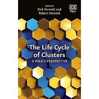 The Life Cycle of Clusters - A Policy Perspective