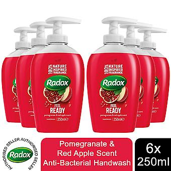 Radox Hand Wash, Pomegranate & Red Apple, 6 Pack, 250ml