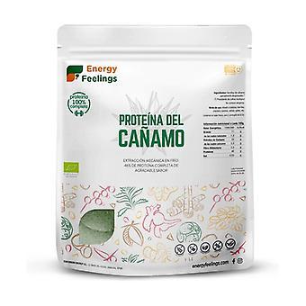 Hemp protein 1 kg of powder