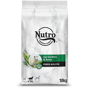 Nutro Natürliches Futter für mittelgroße Lammhunde