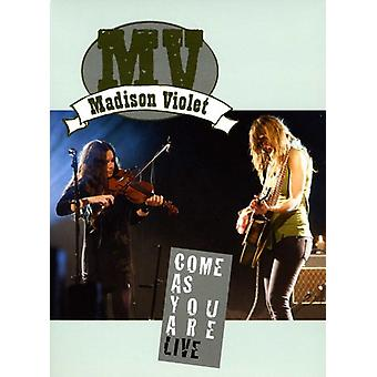 Madison Violet - Come as You Are Live DVD [DVD] USA import