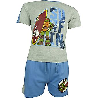 Boys Nickelodeon Ninja Turtles short sleeve T-shirt & Shorts Set