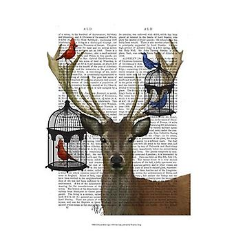Deer & Bird Cages Poster Print by Fab Funky (13 x 19)
