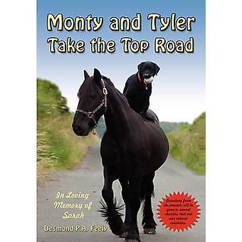 Monty en Tyler nemen de Top weg door Feely & Desmond P.A.
