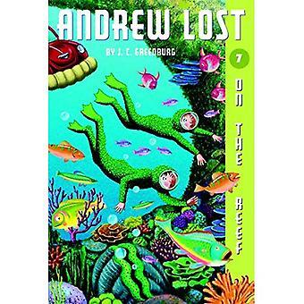 Auf dem Riff (Andrew verloren)