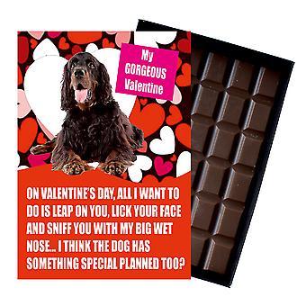 Gordon Setter regalo per San Valentino presenta per gli amanti del cane cioccolato in scatola