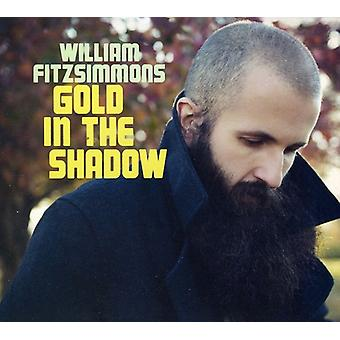 William Fitzsimmons - Gold in the Shadow [CD] USA import