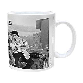Friends Mug Lunch On A Skyscraper New Official Boxed