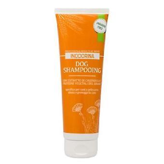Inodorina Shampoo 250Ml Shorthair (Dogs , Grooming & Wellbeing , Shampoos)