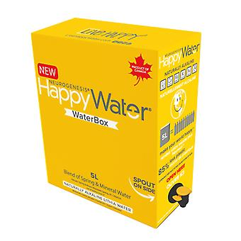 Happy Water Waterbox-( 5 Lt X 1 )