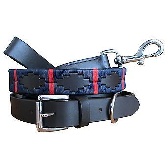 Carlos diaz genuine leather  polo dog collar and lead set cdhkplc40
